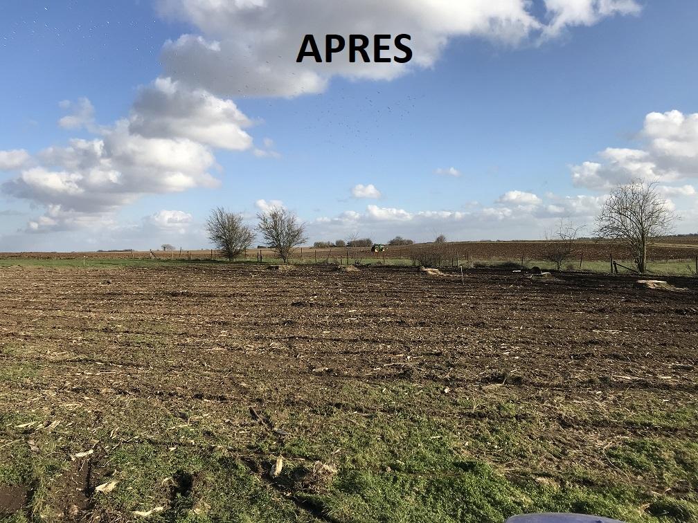 8 Broyage forestier - Nettoyage sous bois - Nettoyage après abattage- Laurent Hubert - Après2